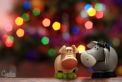 Playing With Bokeh - Piggy & Eeyore