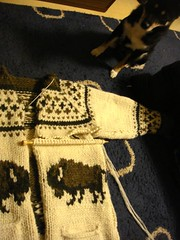 Cowichan Jacket (Bison)