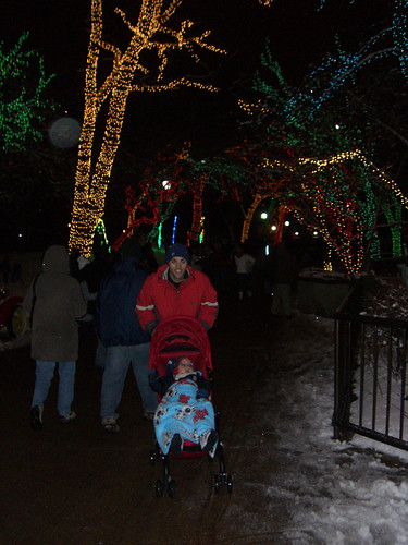20101204-zoo-lights
