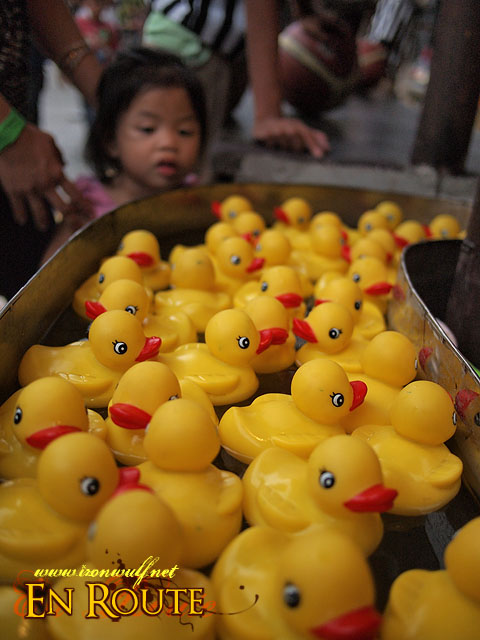 Pick a duck, any duck for a prize