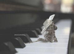 Day 24/365 ~ Je t'aime (Amanda Mabel) Tags: music black tower silver gold miniature necklace focus keyboard day heart bokeh piano blurred eiffel jewellery tiny bow 24 ribbon 365 accessory amandamabel