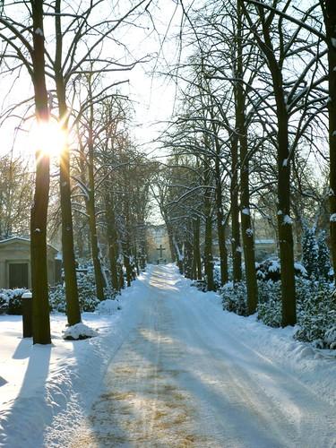P1080965_style_zoomer_berlin_winter