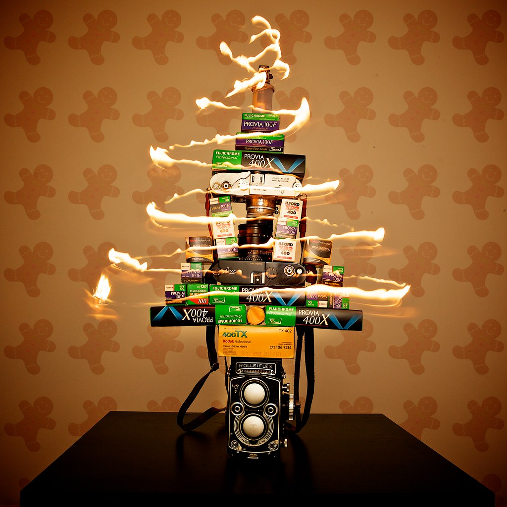 Christmas Tree made from my cameras