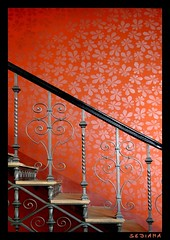 . (sediama (break)) Tags: flowers red wallpaper rot stairs germany dresden treppe staircase handrail banister tapete blmchen 1898 treppenhaus gelnder pieschen mickten ballhaus watzke sediama bennohbel emilschulz carljosephwatzke