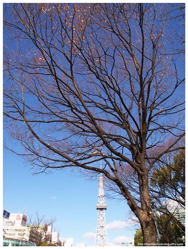 Nagoya 101225 #03