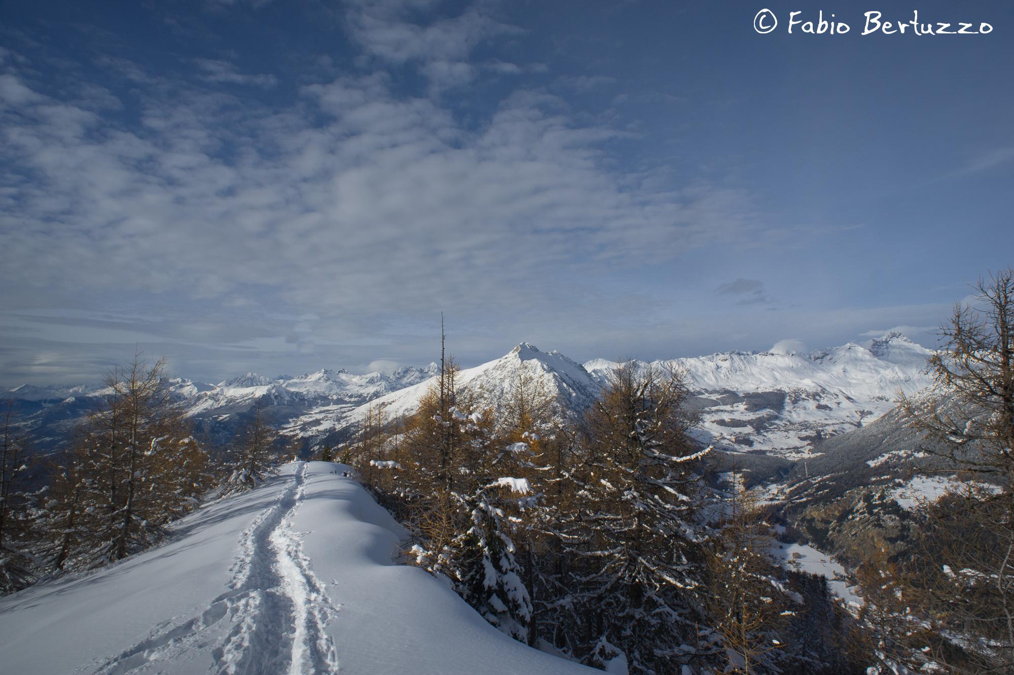 Monte Zerbion & Co. da Testa di Comagna