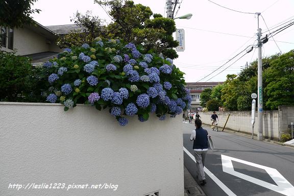 02P1020147_nEO_IMG.jpg