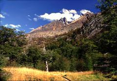 Valle del Lago Gray - Patagonia (Chile) (Noelegroj (De regreso de Carretera Austral)) Tags: chile patagonia mountain torresdelpaine montañas parquenacional
