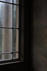 IMG_6559 (Sarah Ross photography) Tags: kew kewgardens garden park royalbotanicgardens london england winter december studyabroad semester vacation winterbreak christmasbreak holiday cold sarahr89 sarahrossphotography grey gray greyday grayday gardensgardenparklondonroyal botanic gardens line lines linear straight window windowpane glass frame windows