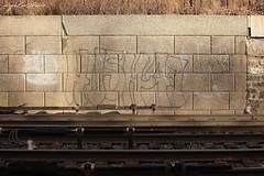 Hush47 (AngieBphoto) Tags: newyorkcity newyork brooklyn juice ewok williamsburg dart trap backfat hert rk9