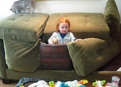toddler in a fort made from couch cushions