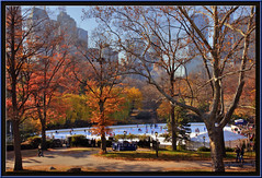 Central Park - New York City (edpuskas) Tags: park new nyc newyorkcity autumn color fall leaves landscape centralpark central icerink hdr