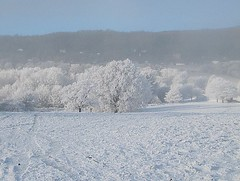 Snow and hoar frost (Katie-Rose) Tags: uk winter snow cold hoarfrost worcestershire malvernhills katierose canonpowershotsx200is
