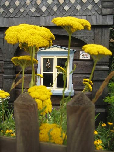 Umgebindehaus mit Blumen