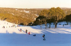 2002 Australia: Selwyn Snowfields #3 (dominotic) Tags: 2002 trees snow ski nature landscape movement skiing australia skiresort nsw newsouthwales toboggan snowymountains adaminaby skiers selwynsnowfields longarmrun townshiprun