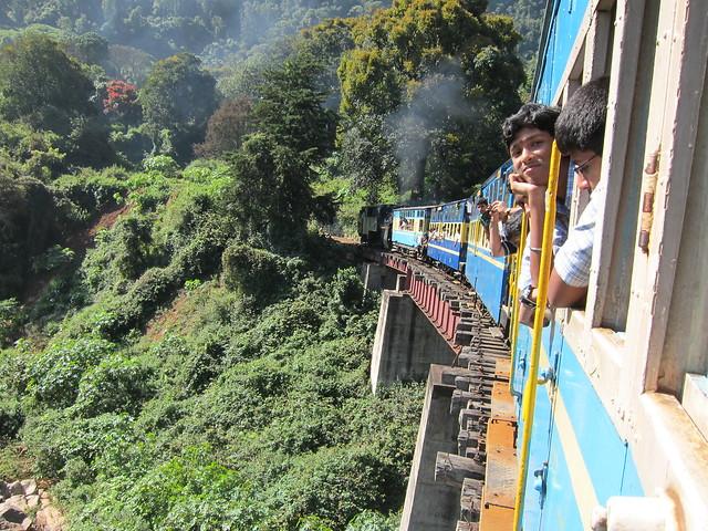 Blue Nilgiri Mountain Express: smug chap