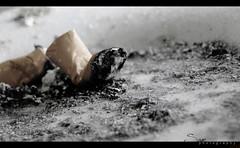 kill yourself ... (Sam200x) Tags: bw dark photography sad cigarette smoke smoking    sonyhx1 sam200x  osamazuhairi osa200xhotmailcom