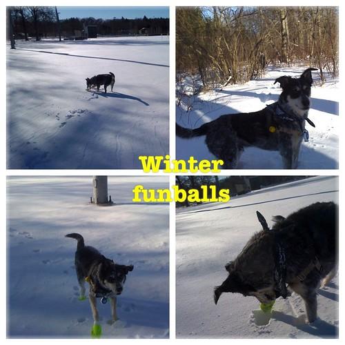 Winterfunballs