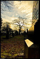 __i\\ (Chemival (slowly getting back in the swing...)) Tags: trees light sky cloud cemetery graveyard leaves silhouette headstone graves sunderland bishopwearmouthcemetery