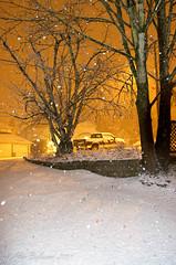 Snow 2011 01