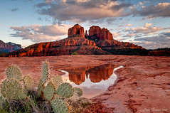Cathedral Rock Reflection. Sedona Arizona (Steve Flowers) Tags: arizona reflection sedona cathedralrock nikond90