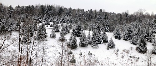 Winter in Barre, Vermont