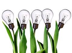 ideas management