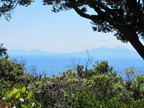 View from the foot of Mt Taranaki