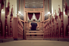 the organist (David O. Andersen) Tags: red portrait music playing church lines gold back dof pipes depthoffield organ benches