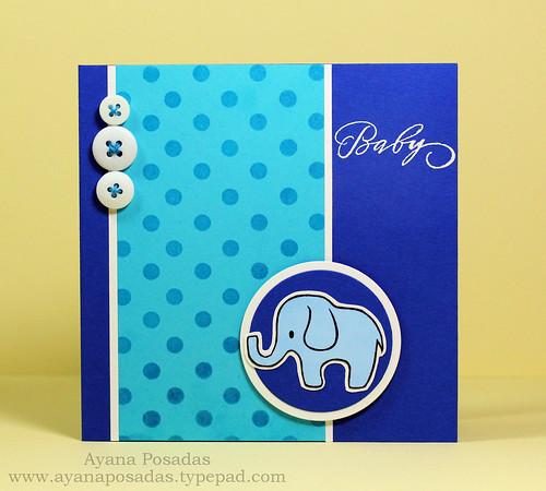 Baby Elephant (1)