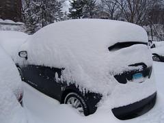 Snow-fro