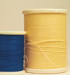 12/365 2011 (susiecw47) Tags: blue thread yellow olympus potd 365 e500