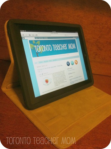 iPad in Moshi Concerti Portfolio