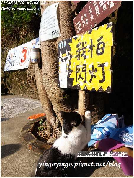 台北瑞芳(侯硐站)貓村20101128_R0016317