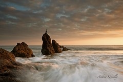 my best side (Andy Kennelly) Tags: ocean california light wild seascape motion bird beach wet rock clouds landscape coast rocks long exposure waves pacific side wave el malibu best southern cal rugged matador comorant