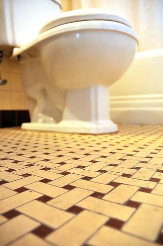 Week 2 - Bathroom Cleaning Looms Over Me