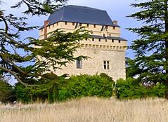 Château de Déhés - Gers (Vaxjo) Tags: france castle château 32 castillo castelli gers midipyrénées déhés