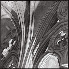 Cloisters (Alistair Haimes) Tags: film cathedral bronica salisbury delta100 cloisters sqa 80mm epsonv700 gettyimagesuklocation