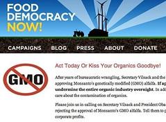 Say NO to GM Alfalfa