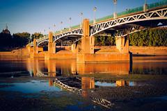 Toulouse, France - Rue du Pont Saint-Pierre (Regan Gilder) Tags: ruedupontsaintpierre bridge reflection sunset evening france eu europe southoffrance languedoc languedocroussillon river water garonne canoneos5dmarkiii canon