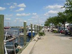Tarpon Springs Sponge Docks