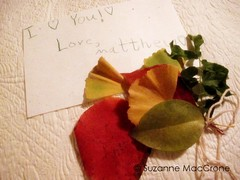 Priceless (Suzanne MacCrone Rogers ~ Italian Girl in Georgia) Tags: autumn red orange green fall love girl crimson leaves yellow georgia fire gold italian cream olive letter bouquet ecru veridian cmwdyellow