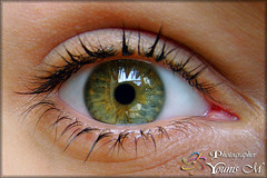 Color > My Eye *_^ (Younis M.) Tags: white black color green eye love me colors beautiful true wonderful amazing eyes iraq cybershot greeneye  mosul younus younis h50    dsch50
