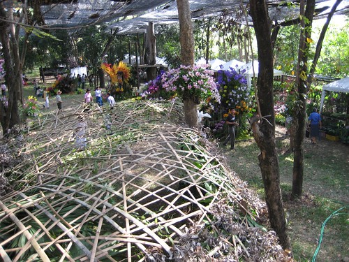 Rose Garden: Orchid  Market under net canopy