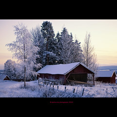 countryside (stella-mia) Tags: winter snow norway fairytale evening countryside explore frontpage sn eveninglight 2470mm canon5dmkii