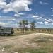 Serengeti picnic spot