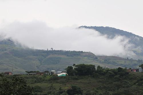 NP 2DU colombia 36_lo