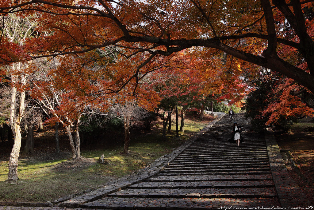 京阪散策 奈良篇