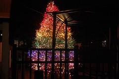 Rainbow Tree (MTSOfan) Tags: christmas gltb rainbowtree openandaffirming
