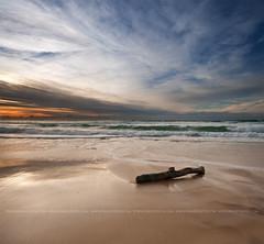 (Pawel Papis Photography) Tags: ocean wood sky cloud beach water square movement log sand wave explore frontpage dri pawel vertorama